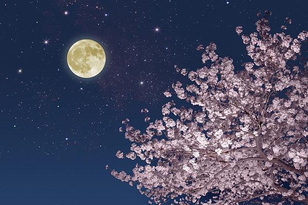 好消息!中秋节夜间云量较少 适宜赏月
