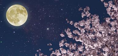 河北中秋节夜间云量较少 适宜赏月