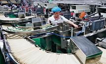 河北南和:融合發展壯大鄉村產業