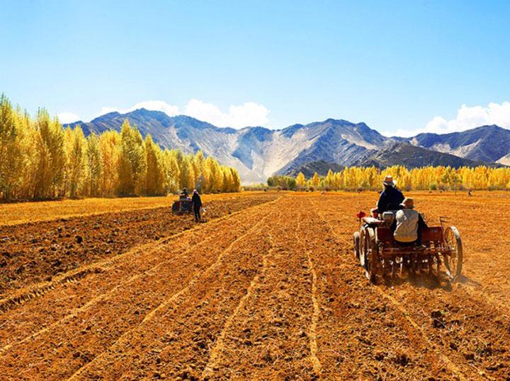 冀州区开展新型职业农民培训 助推农民致富