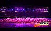 河北省第九屆殘疾人運動會開幕式