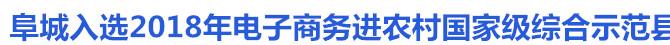 阜城入选2018年电子商务进农村国家级综合示范县