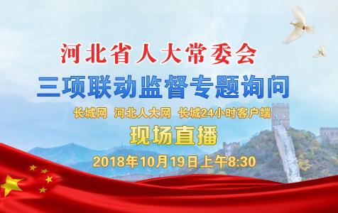 河北省人大常委会三项联动监督专题询问