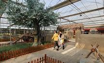 香河:农旅融合发展助力乡村振兴