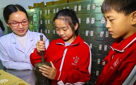 河北安平:弘扬传统中医药文化