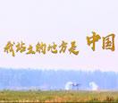 """""""我站立的地方是中国""""之中国空军篇"""