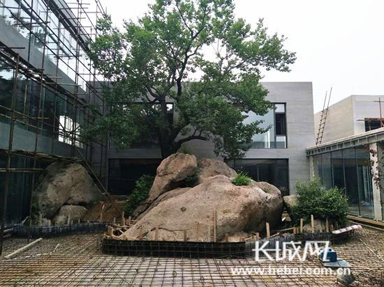 位于青龙县肖营子镇的秦皇岛冷口温泉文化旅游度假区项目施工现场.