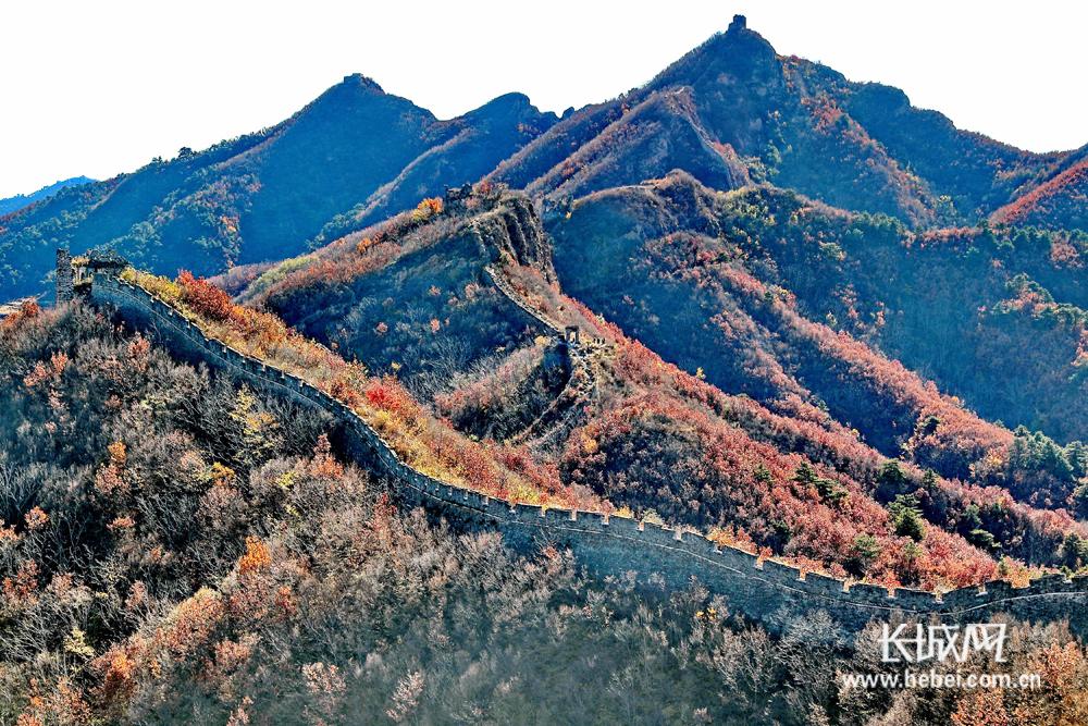 秦皇岛:秋到古长城