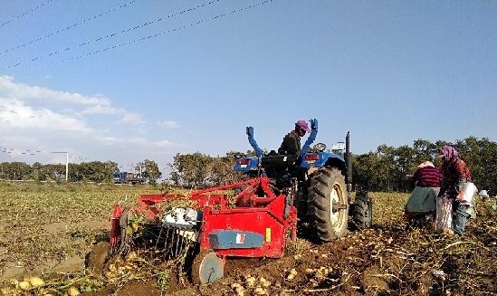 张北马铃薯产业带动农户脱贫摘帽