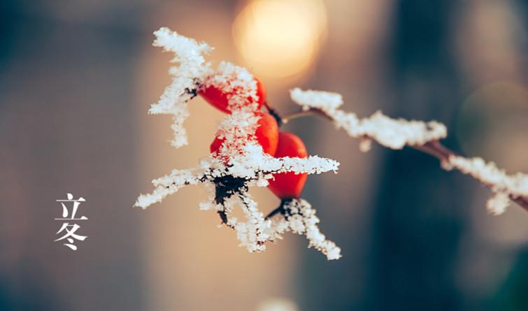 今日立冬|朔风起,万物藏!一年中最冷的时候来了