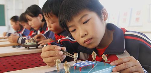 """传统文化进校园:""""小毛猴""""的""""大世界"""""""