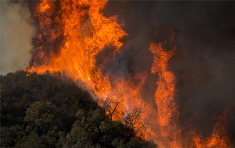 加州山火肆虐升级 LadyGaga布兰妮等名人豪宅被毁