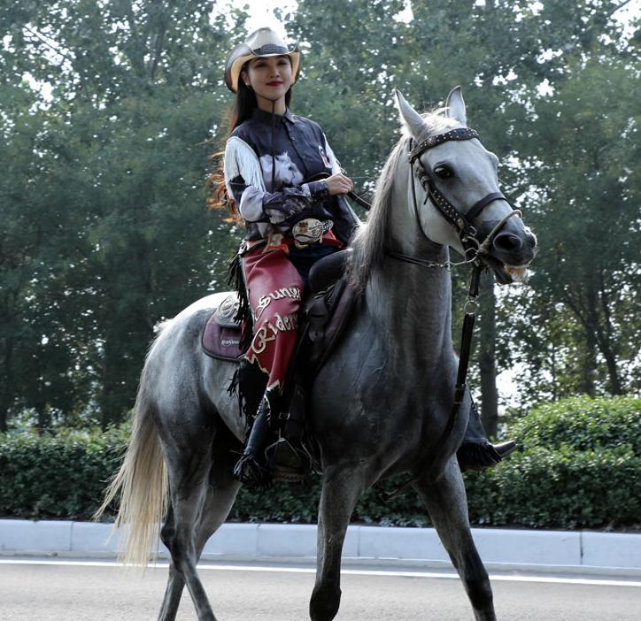 【高清图组】盛装马匹巡游活动在衡水园博园启程 广大市民驻足观看