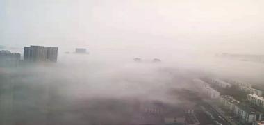 """早晨你""""迷茫""""了?唐山气象台说了,明天大雾继续"""