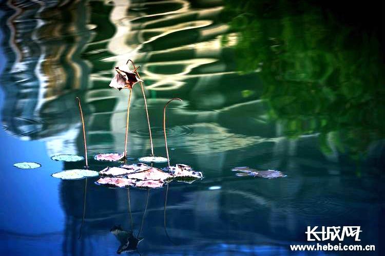 长城拍客第六十三期:浮影残妆,临水斜阳