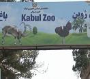 喀布尔动物园:从衰败到重建