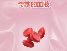 【H5】奇妙的血液
