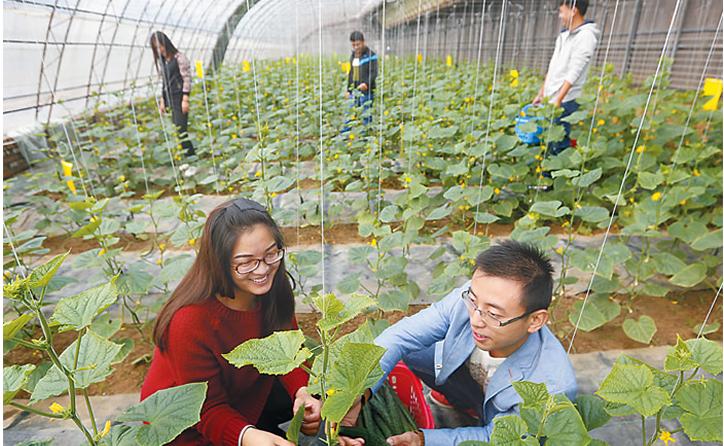 饶阳县抢抓机遇 多措并举 助推县域经济跨越发展