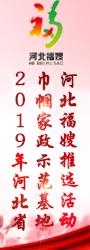 2019年河北省巾帼家政示范基地河北福嫂推选活动