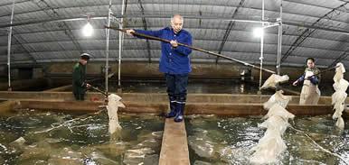 唐山乐亭:海产品工厂化养殖助农增收