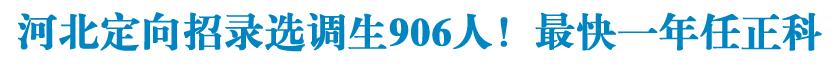 河北定向招录选调生906人!最快一年任正科!