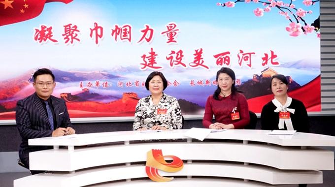 河北省妇女第十四次代表大会代表畅谈巾帼建新功