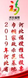 2019年河北省巾帼家政示范基地河北福嫂推选投票