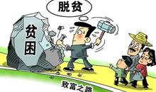 董左桂:精準扶貧 人大代表在行動