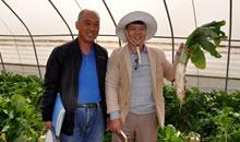 張全杰:讓農民掌握種植技術 撒下致富的種子