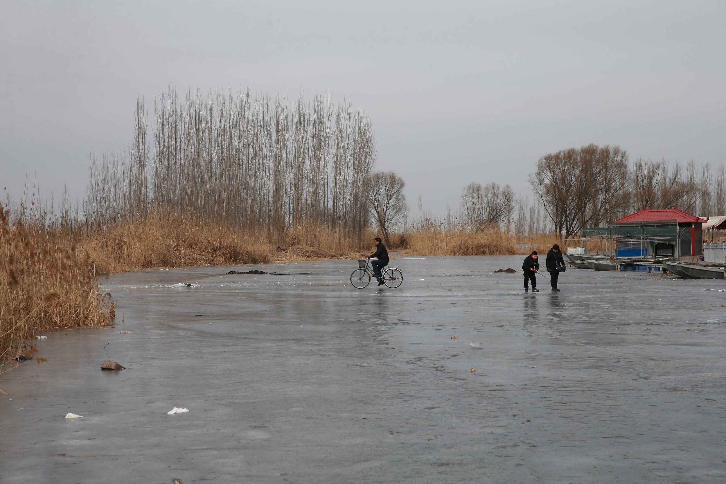 河北雄安:冬季白洋淀别有情趣不能情趣体验初看么图片
