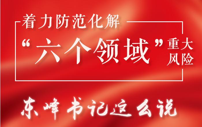 """图解   着力防范化解""""六个领域""""重大风险,东峰书记这么说"""