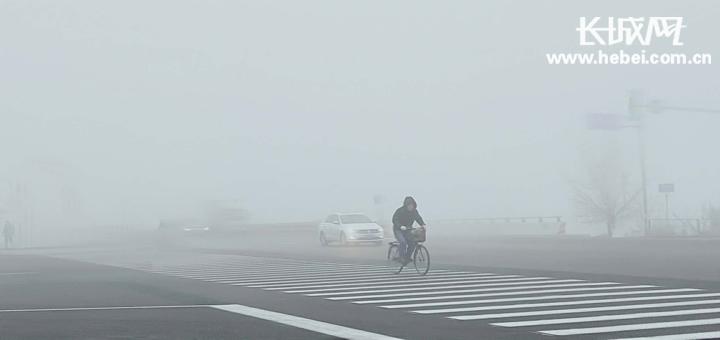 衡水大雾锁城 最低能见度仅60米左右
