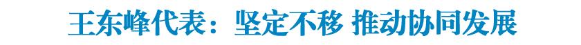 王东峰代表:坚定不移 ?#36139;?#21327;同发展
