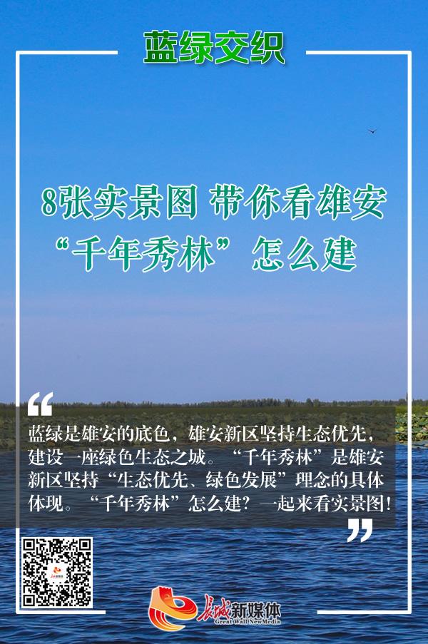 """【实景图解】带你看雄安""""千年秀林""""怎么建"""
