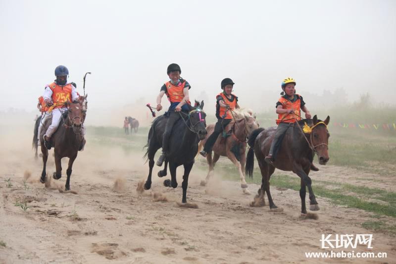 2019年中国安平国际马联(FEI)耐力达标赛即将开赛