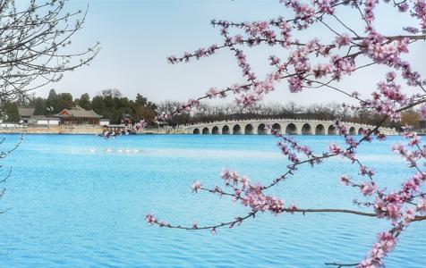 北京:春到颐和 花开似锦