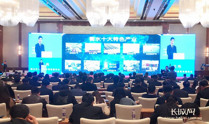 衡水·杭州(长三角)投资环境说明会举行 签约21个重点项目 总投资186.5亿元