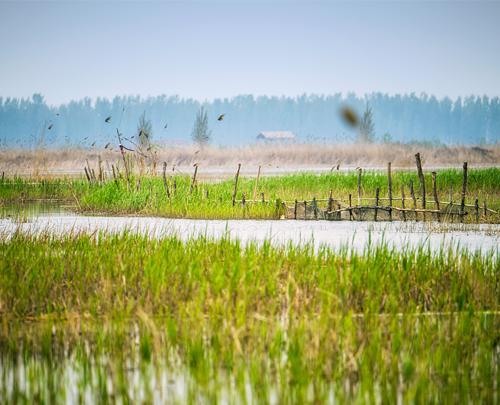 365体育建立白洋淀水环境质量目标考核评价机制和扣缴生态补偿金制度