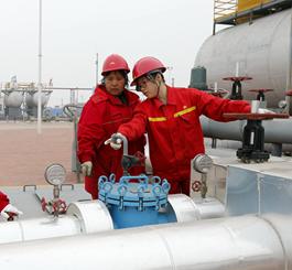 冀东油田:人工岛上绽芳华