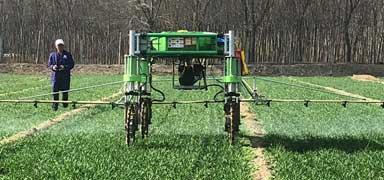 【?#20934;究?#38376;看亮点②】粮食播种面积增加72.5万亩