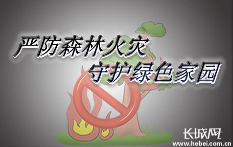 【新闻深1度】严防森林火灾 守护绿色家园