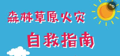 森林草原火灾自救?#25913;? border=