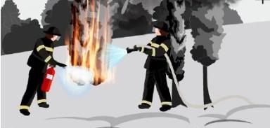 科普:什么是林火爆燃?