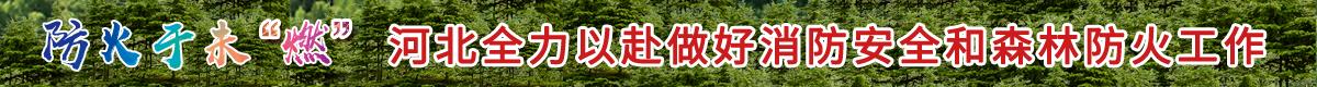 """防火于未""""燃""""河北全力以赴做好消防安全和森林防火工作"""