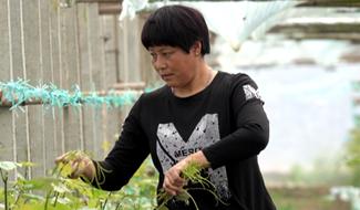 """""""葡萄大姐""""李苍英:我的理想是带领乡亲们当""""职业新农民"""""""