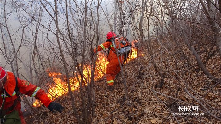 """就是""""火""""不起来 走进秦皇岛森林消防"""