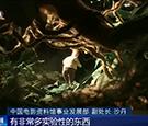 第九届北京国际电影节开幕 影响力提升 多部佳作首映