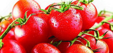 西红柿熟着吃可降血压和胆固醇