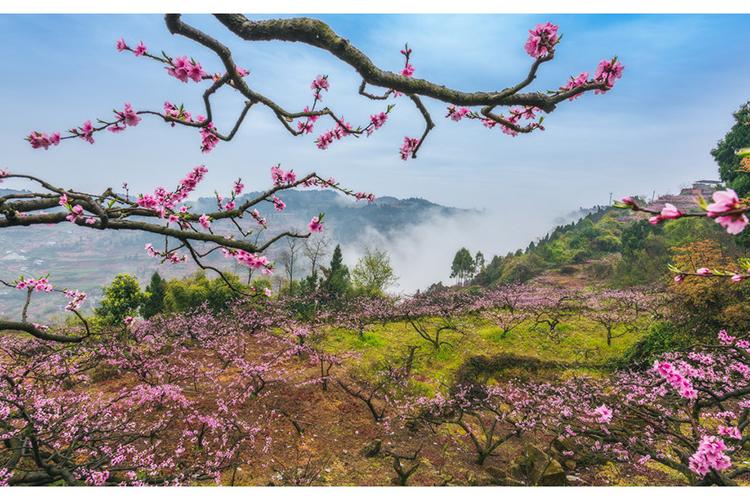重庆千年小城藏着即将消失的桃花源 不输凤凰、美比大理