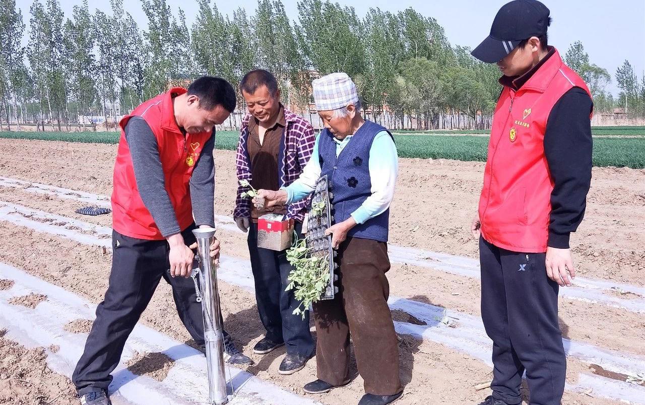 """武邑农业技术志愿服务队""""传经送宝""""到田间"""